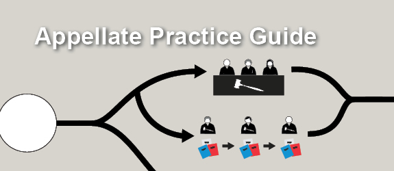 Appellate Lawyer Practice Guide